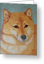 Sheba Inu  Greeting Card