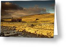 Shed In The Yorkshire Dales, England Greeting Card