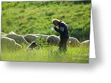 Shepherd Greeting Card