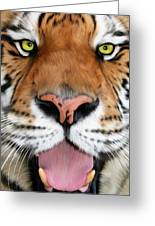 Sherekhan Greeting Card by Big Cat Rescue