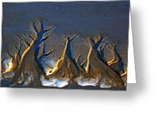 Shifting Sands Greeting Card