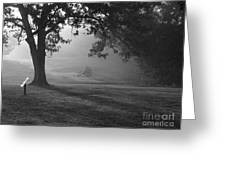 Shiloh In The Fog Greeting Card by David Bearden