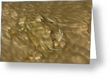Shimmering Crab Greeting Card