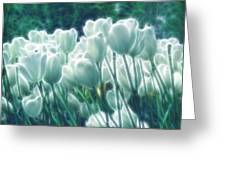 Shimmering Tulips Greeting Card