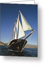 Ship Sailing Through The Galapagos Greeting Card