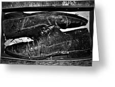 Shoebox Greeting Card