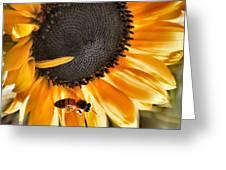 Shoo Bee Greeting Card