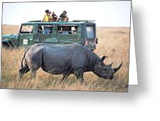 Shooting Rhinos Greeting Card