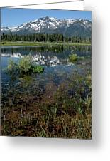Shore Reflections Of Mt Tallac Greeting Card