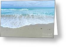 Shores Of  Miamibeach Greeting Card