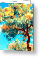 Shower Trees Greeting Card