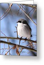 Shrike - Lonely - Missing You Greeting Card