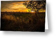 Shropshire Fields In Late Summer Greeting Card