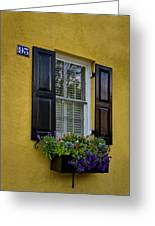 Shutters And Window Boxes Greeting Card