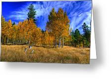 Sierra Nevada Fall Colors Lake Tahoe Greeting Card by Scott McGuire