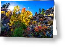 Sierra Nevada Fall Colors Lassen County California Greeting Card by Scott McGuire