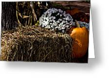 Sign's Of Fall Greeting Card