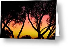 Silhouette Of Autumn Greeting Card
