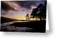 Silhouette Of Trees On The Riverbank Greeting Card