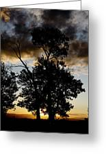 Silhouette Sunset Greeting Card