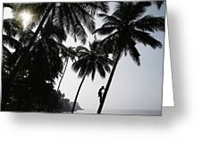 Silhouetted Man Climbing A Palm Tree To Greeting Card