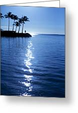 Silhouetted Plams IIi Greeting Card
