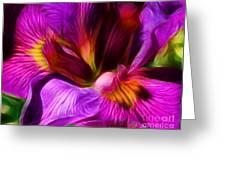 Silk And Satin Greeting Card
