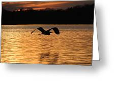 Silouette On The Lake Greeting Card