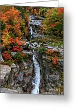 Silver Cascades Surrounded By Colors Greeting Card