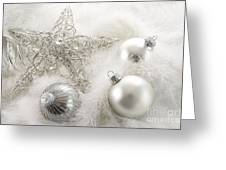 Silver Holiday Ornaments In Feathers Greeting Card