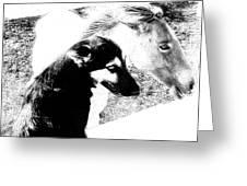 Similar Spirits Greeting Card by Heather  Boyd