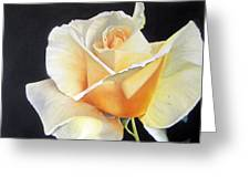 Simple Delight Greeting Card