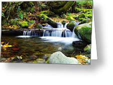 Simple Pools  Greeting Card