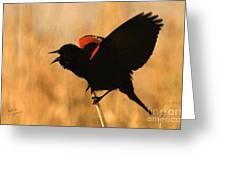 Singing At Sunset Greeting Card