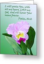 Single Pink Orchid Ps. 86v12 Greeting Card