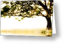 Single Tree In Motion Greeting Card