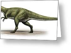 Sinraptor Dongi, A Prehistoric Era Greeting Card