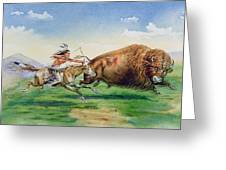 Sioux Hunting Buffalo On Decorated Pony Greeting Card