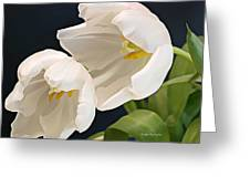 Sisters In White Greeting Card