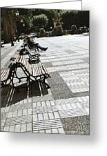 Sitting In The Park - Madrid Greeting Card