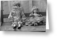 Sitting Pretty In Black And White Greeting Card