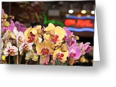 Sixth Avenue Orchids Greeting Card by Denice Breaux