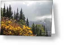 Skagway Alaska 2 Greeting Card