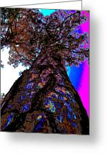 Skies The Limit Abstract Greeting Card