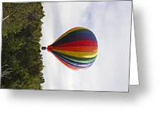 Skimming The Treetops Greeting Card