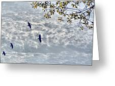 Sky Clouds And Geese Greeting Card