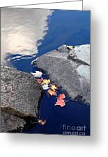 Sky Reflection Leaves And Rocks Greeting Card