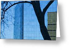 Sky Scraper Tall Building Abstract With Windows Tree And Reflections No.0066 Greeting Card