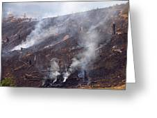 Slash And Burn Agriculture Greeting Card