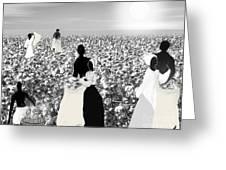 Slaves Picking Cotton Greeting Card by Belinda Threeths